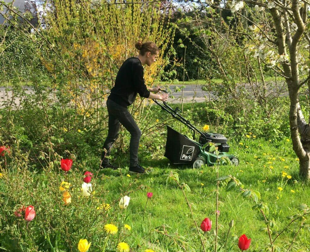 Græs græsklipning græsslåmaskine