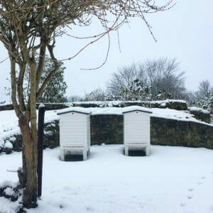 Trugstade sne bistade