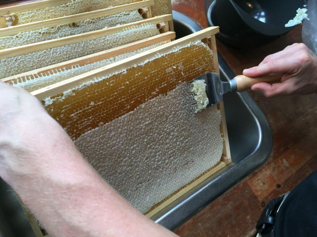 Nyhøstet honning afskrabning