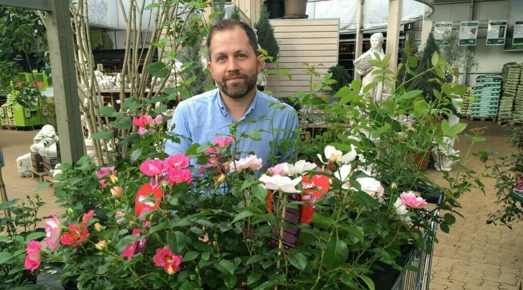 roser plantecenter indkøb