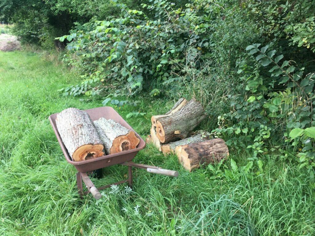 træstub instekthotel trillebør