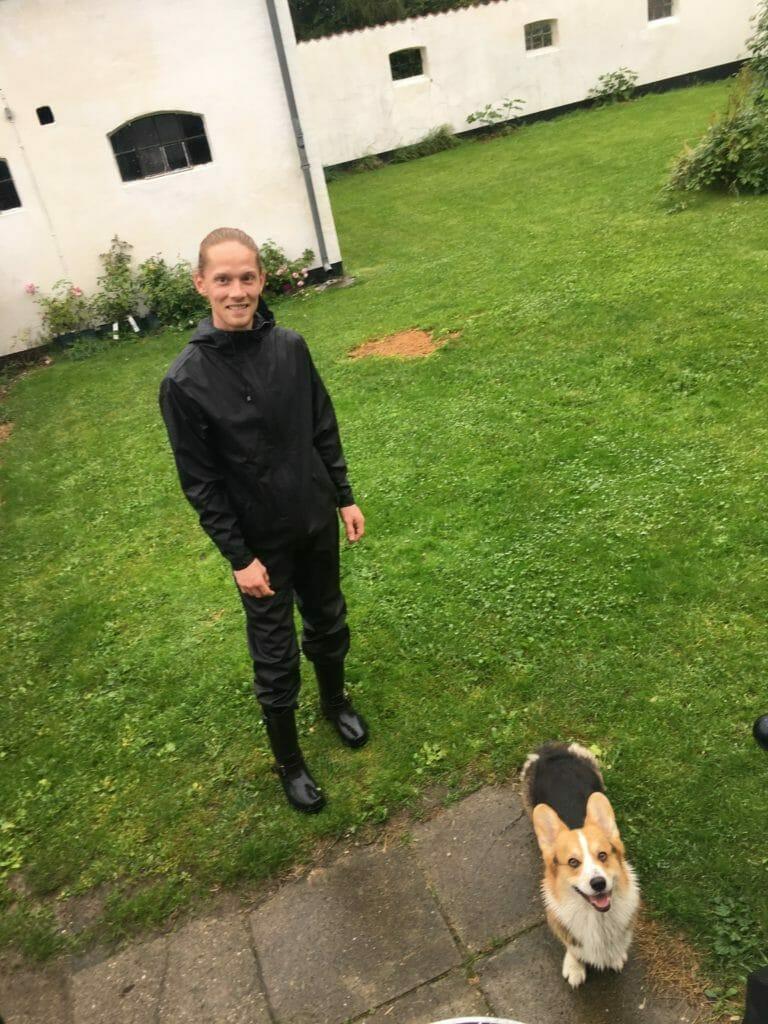 regnvejr regntøj hund
