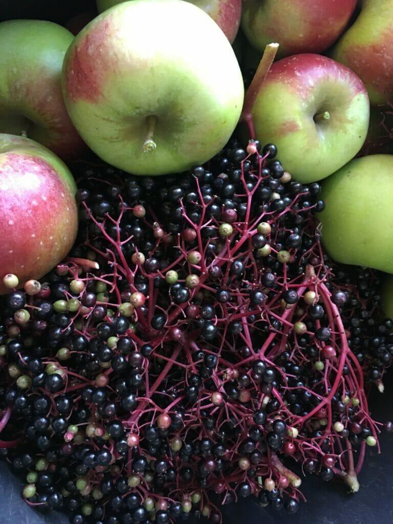 æbler hyldebær