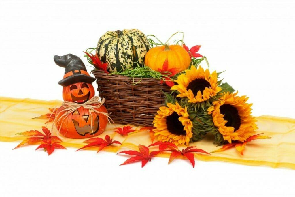 Halloween dekoration pynt