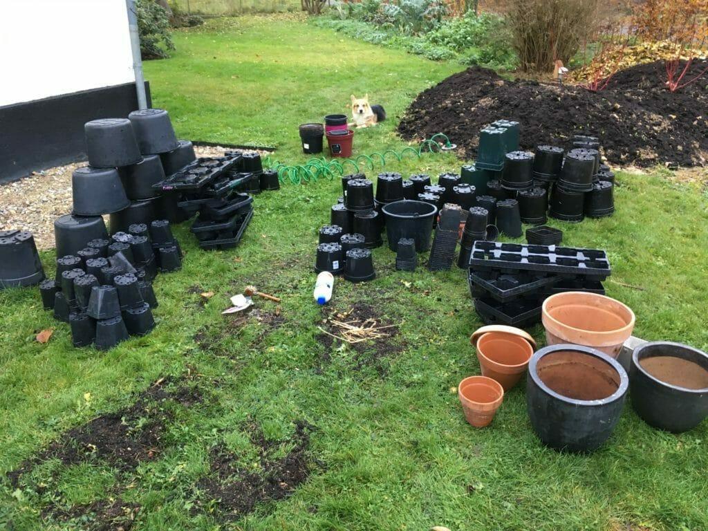 rengøring plastpotter vask potter