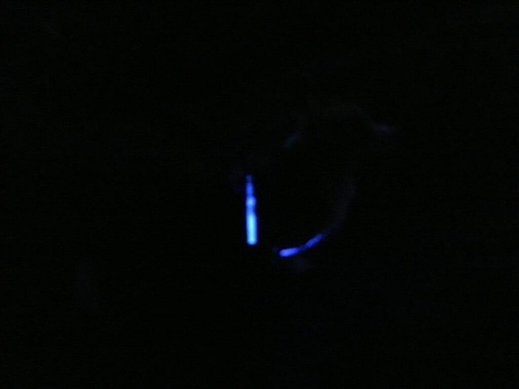 Hund lys mørkt reflekser