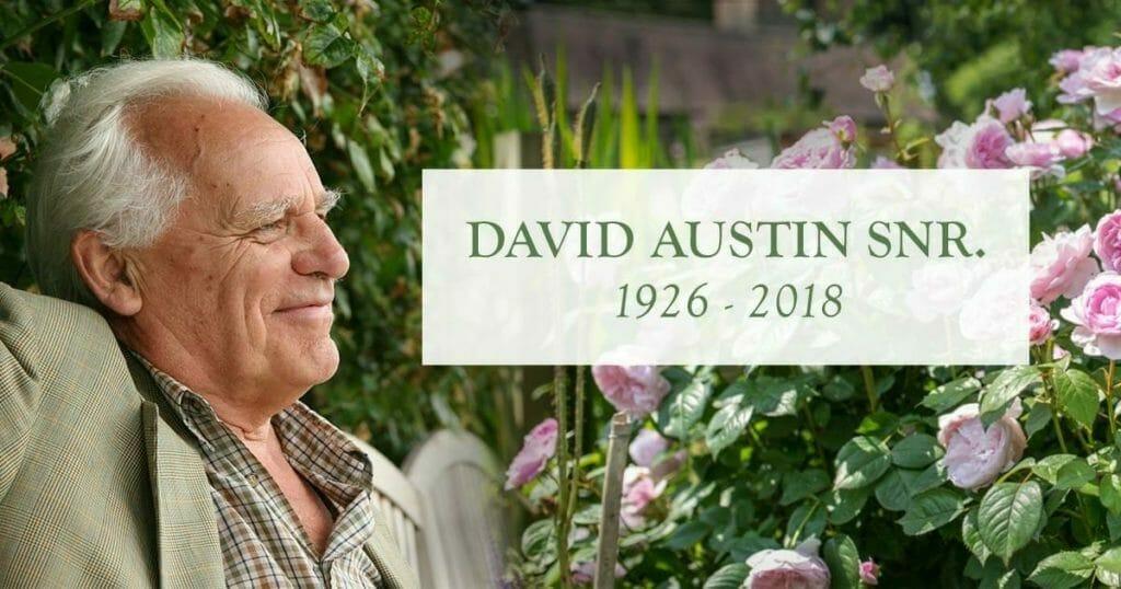 David Austin kronik mindesord