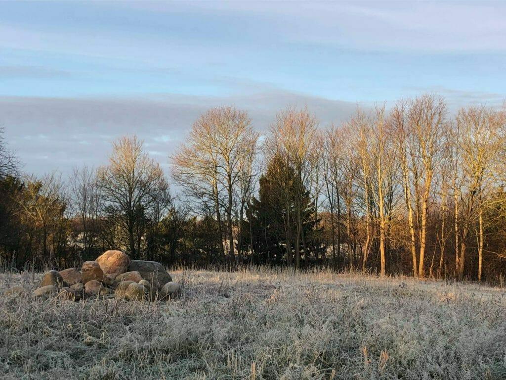 Frostvejr vintervejr rimfrost mark