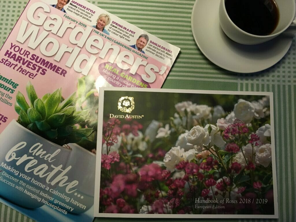 Georginer køb Roser planting såtid Dahlia