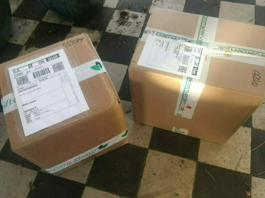 Georginer knolde Dahlia pakker post forsendelse