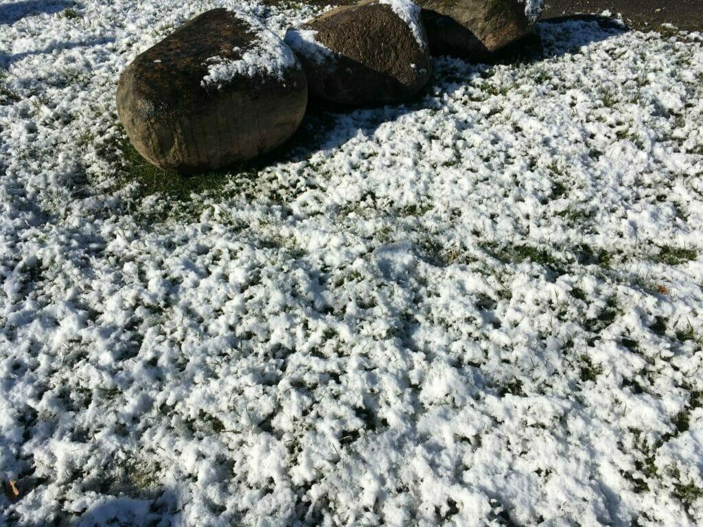 sne forår frost sommertid