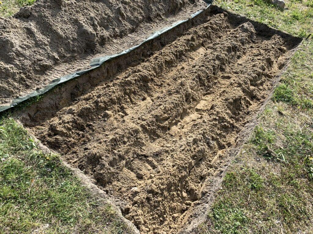 anlægsning af aspargesbed