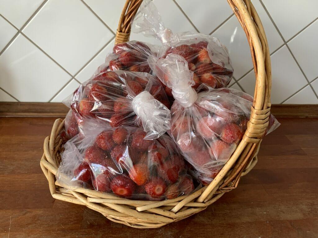 friske jordbær til fryser