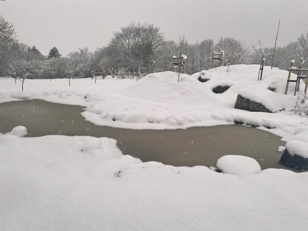 sne snevejr i haven havedam