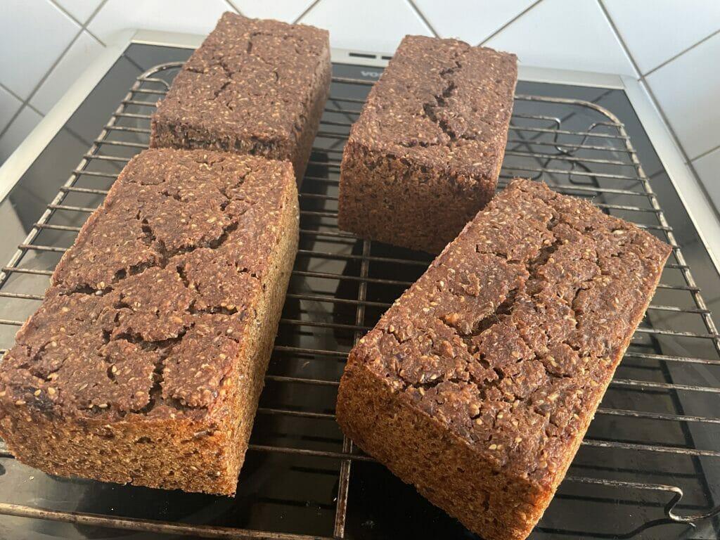 rugbrød surdej rugbrødssurdej opskrift bagning hjemmebagt