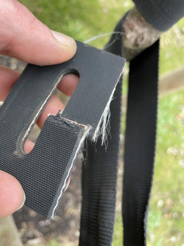 hvor længe skal et træ have støtte opbinding opbindingsbånd opbindingsrem