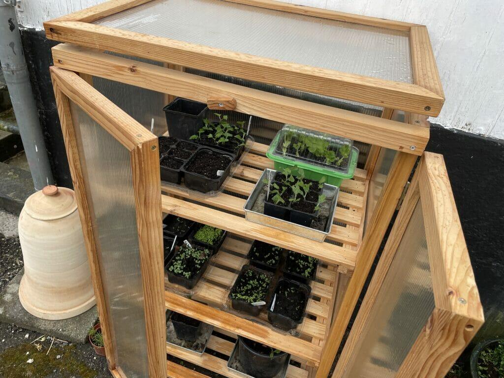 stikling formering dyrkning avl