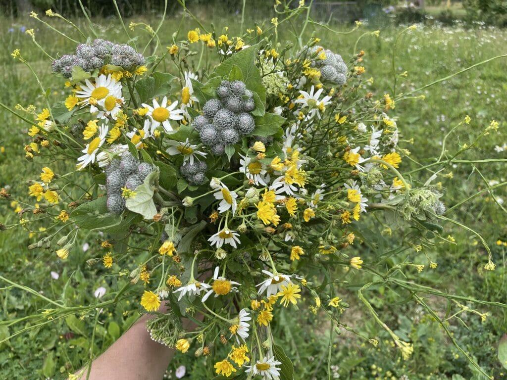 buket med vilde blomster buketter blomstereng